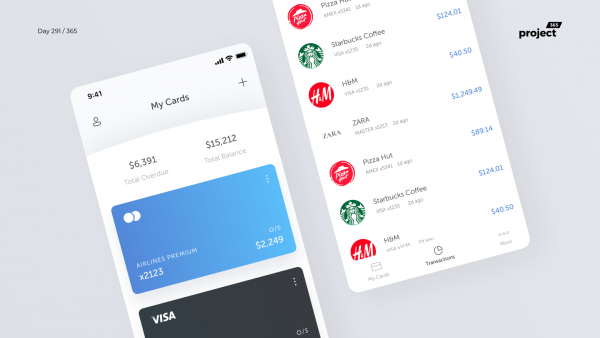 Day 291 – My Credit Cards – App Concept