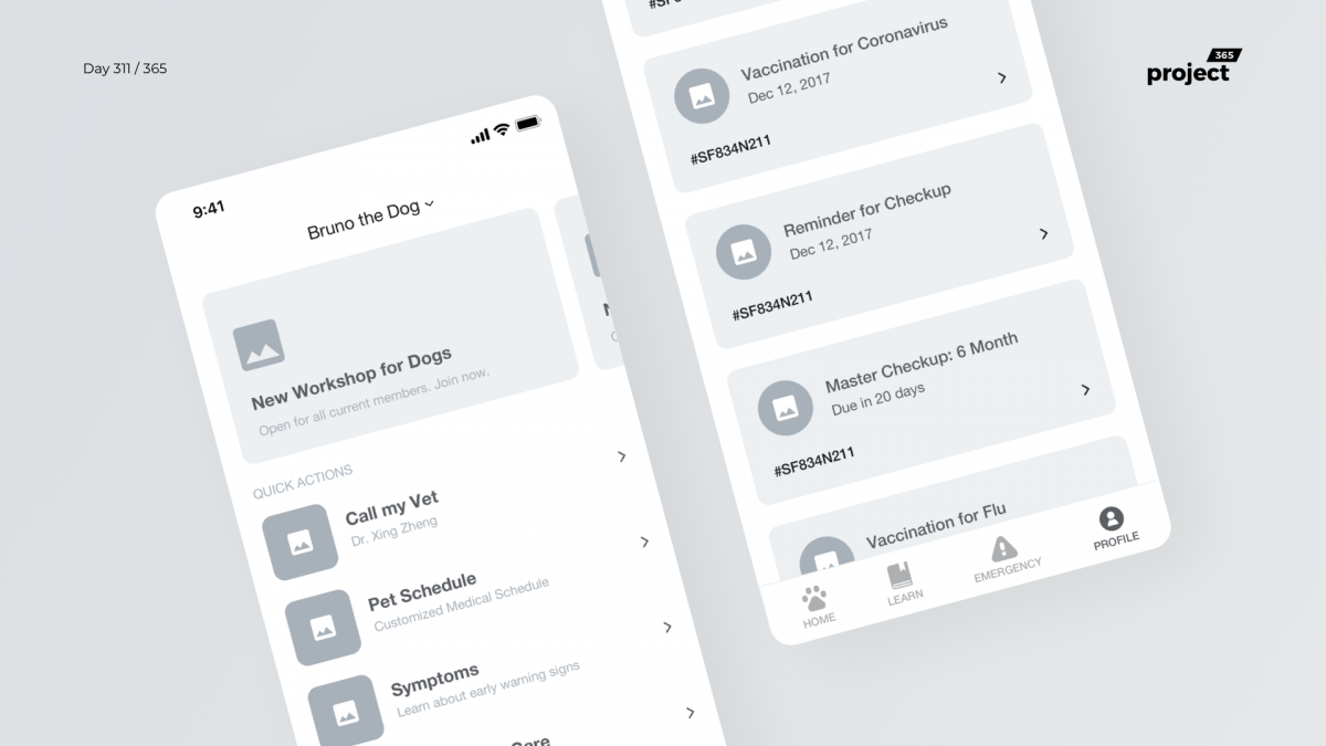 Day 311 – Pet Healthcare App Wireframe Concept